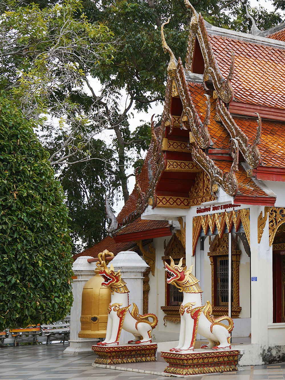 thailand chiang mai and koh phangan